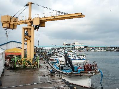 非洲海运至达喀尔