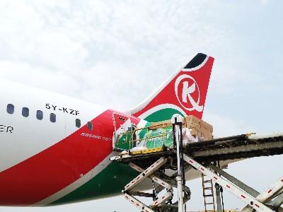 包机直飞支持国际抗疫