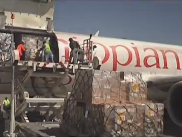 空运之货运包机——威都物流小科普