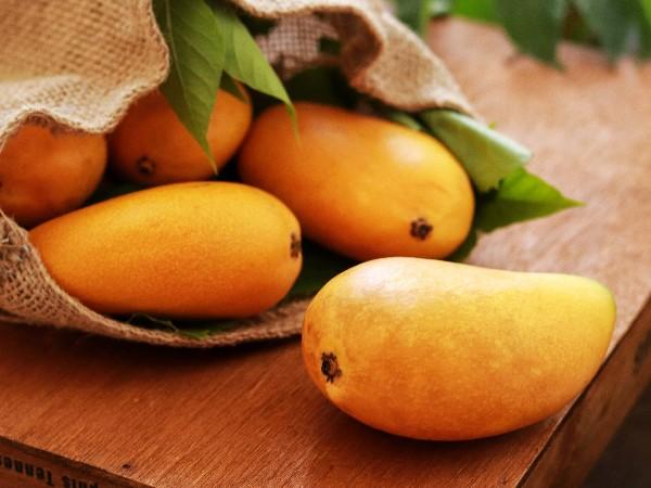 埃及农产品出口市场情况如何?