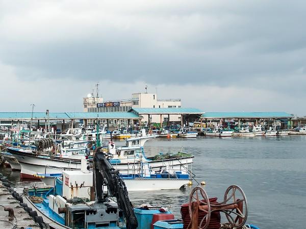 海运业务常用缩略语、国际海运术语大全